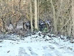 Continue reading: Victim identified following collision west of Guelph: Wellington County OPP