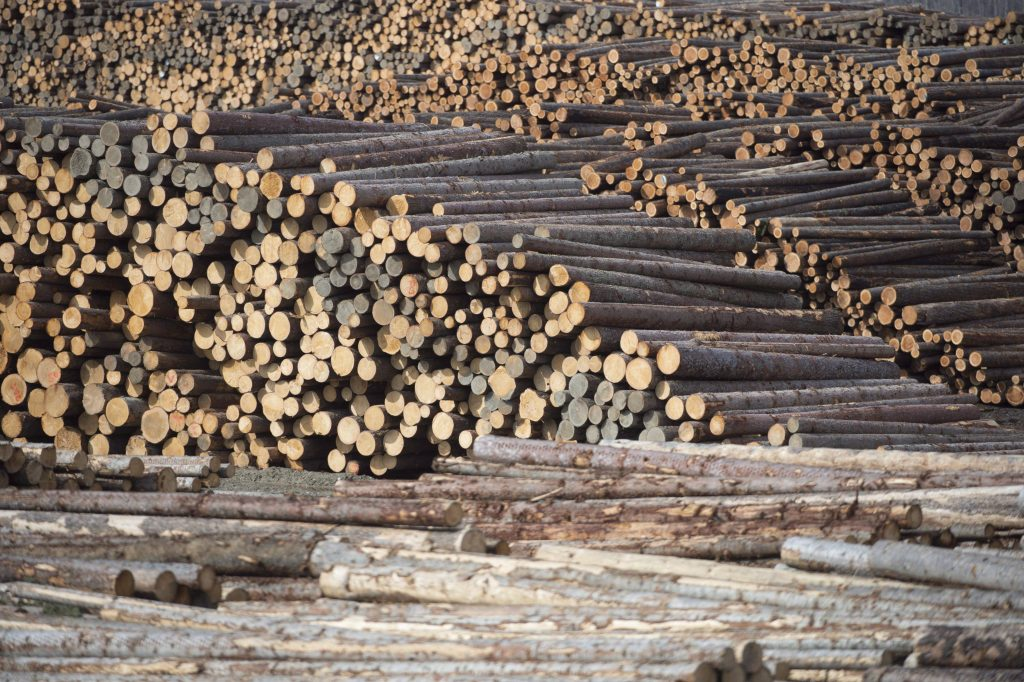 It seems barely a day goes by without an announcement about layoffs, temporary closures or permanent mill shut downs in British Columbia's struggling forest industry. Softwood lumber is pictured at Tolko Industries in Heffley Creek, B.C., Sunday, April, 1, 2018.