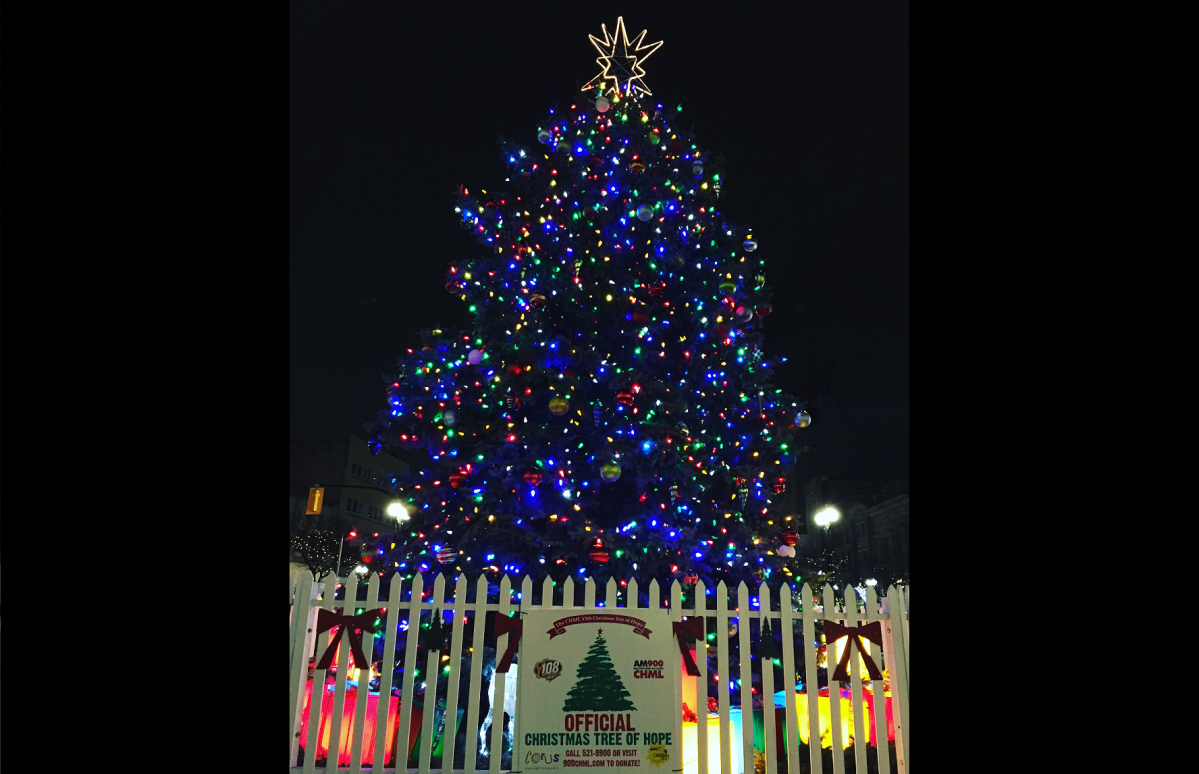 The annual lighting of the Christmas Tree of Hope in downtown Hamilton is a tradition that dates back to 1976.