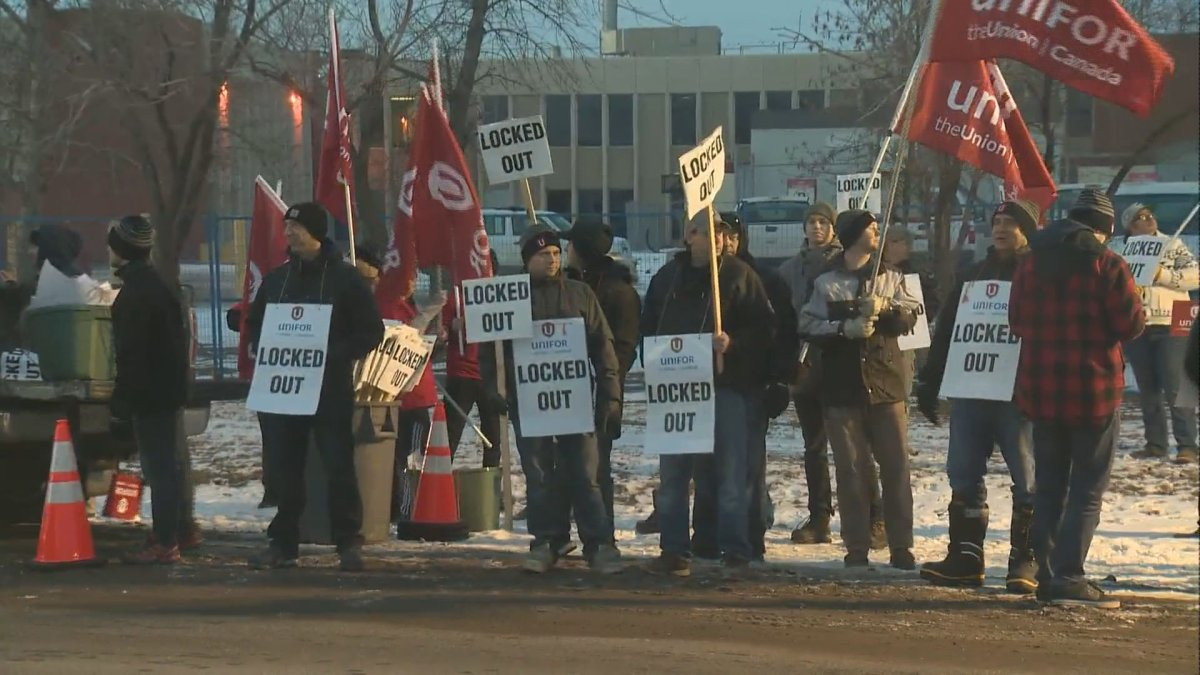 Employees of the Co-op Refinery hit the picket line after being locked out by their employer, Thursday.