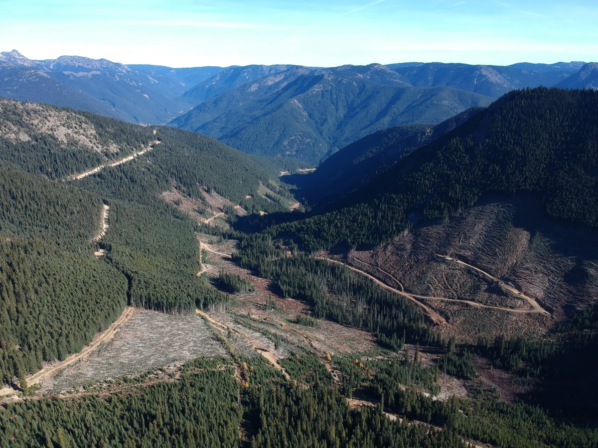 A section of the Smitheram Valley within the Donut Hole, or Silverdaisy, area in the Skagit River Valley, where B.C. loggers have held operations in 2004 and 2018.
