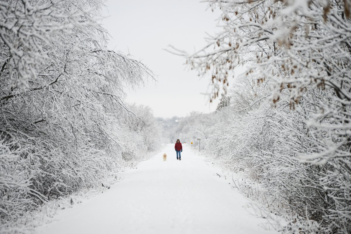 A person walks their dog along the Ottawa Valley Rail Trail in Mississippi Mills, Ont., on Tuesday, Dec. 31, 2019.