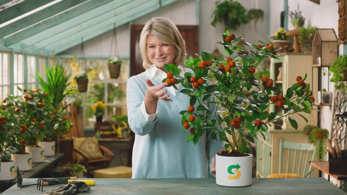 Martha Stewart on set of the Subway Beyond Meatball commercial.