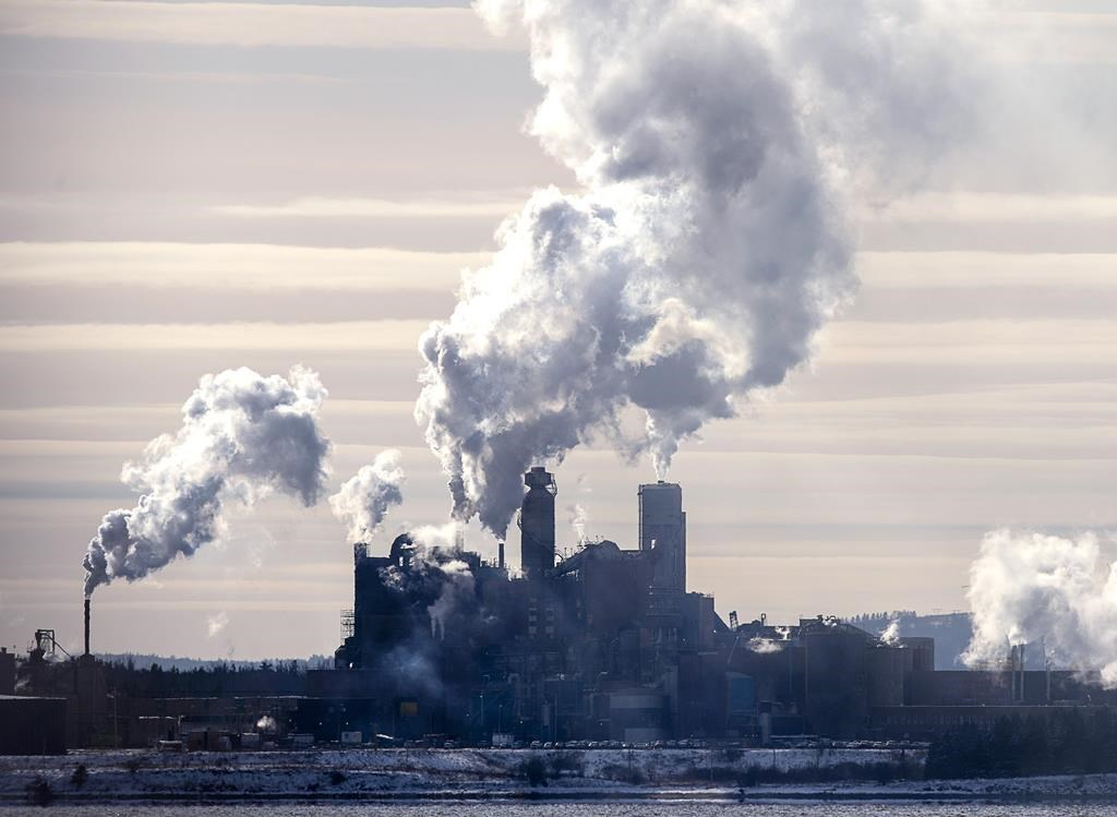 The Northern Pulp mill in Abercrombie Point, N.S., is viewed from Pictou, N.S., Friday, Dec. 13, 2019. The Nova Scotia government has scheduled a series of open houses to help those facing job losses because of the pending closure of a kraft pulp mill near Pictou.