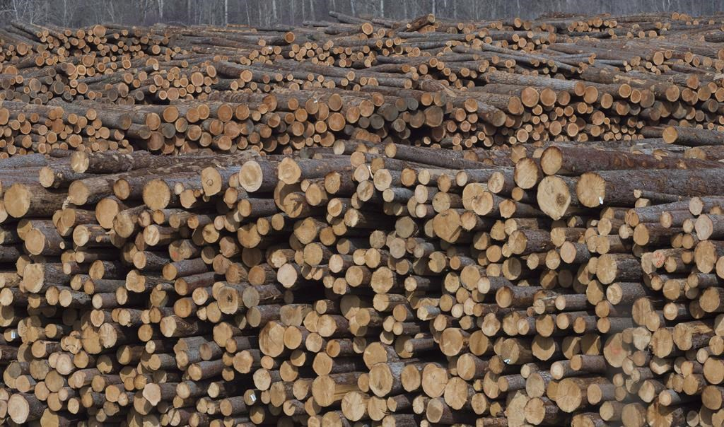 Nova Scotia to ease spring weight restrictions to assist forestry sector - image