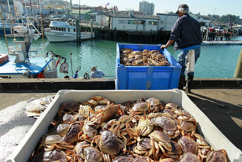 A worker moves a bin of Dungeness crabs after it was offloaded from a fishing vessel on Nov. 17, 2010 in San Francisco, California.