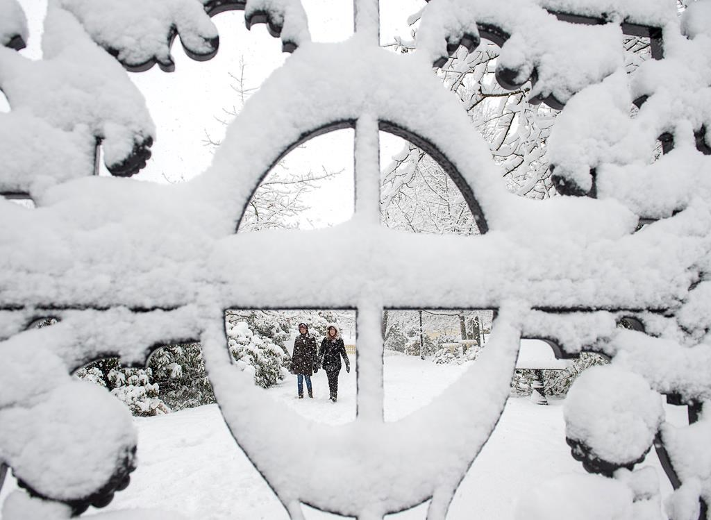 Two women stroll through the Public Gardens during a snow storm in Halifax on Wednesday, Jan. 8, 2020.