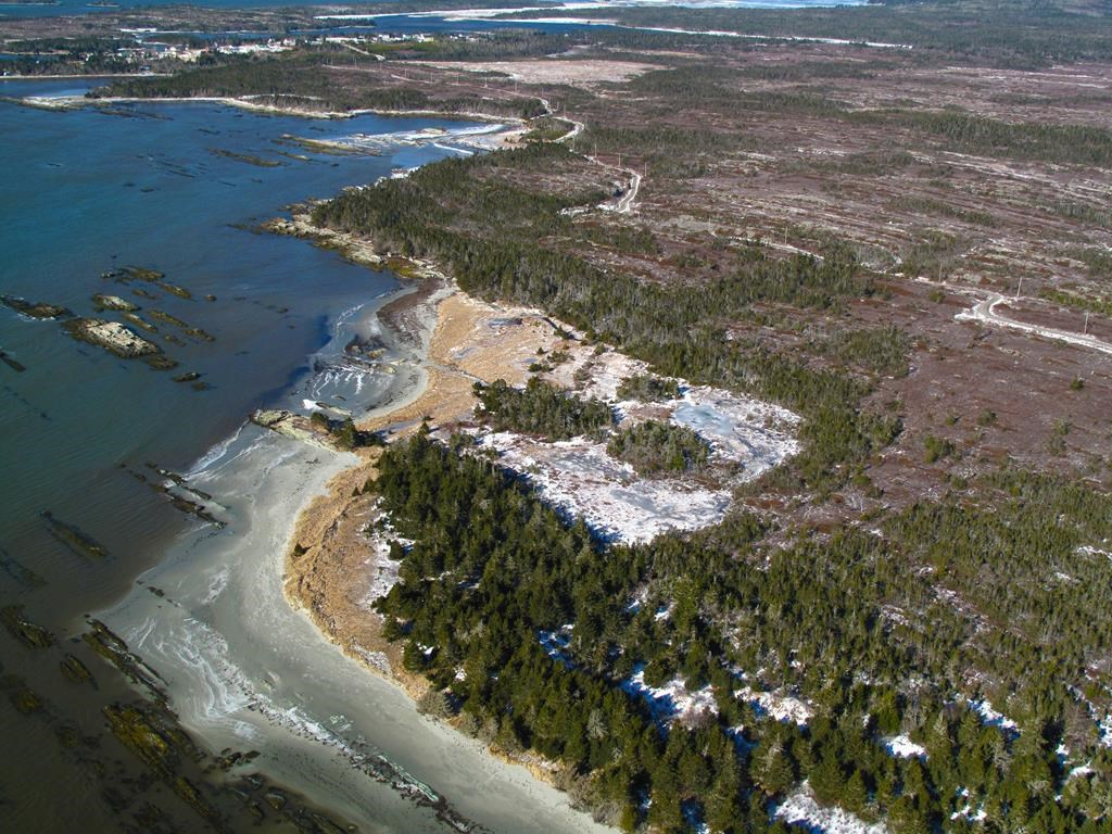 "Calls are mounting for the Nova Scotia government to reconsider a potential sale of a section of ""spectacularly rugged"" Crown-owned land along the province's Eastern Shore to private developers."