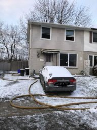Continue reading: More than 2 dozen animals saved, 4 cats dead after London house fire