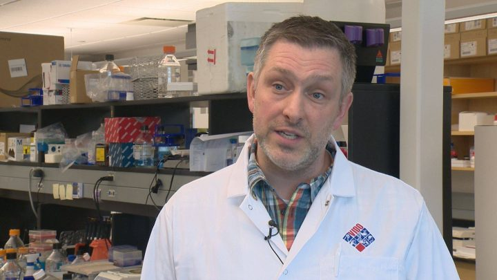 Darryl Falzarano says he's hoping that his institute's promising tests on ferrets and hamsters will translate into safe and effective results in the human testing phase.