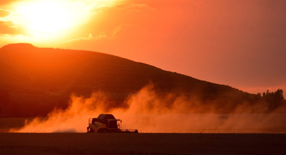 A farmer harvests wheat with a combine harvester against the light of the setting sun. One ag expert is predicting a relatively normal year for Manitoba's agriculture industry, despite the ongoing pandemic.