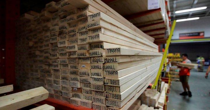 Sky-rocketing lumber prices shock renovators: 'It's ridiculous'  image