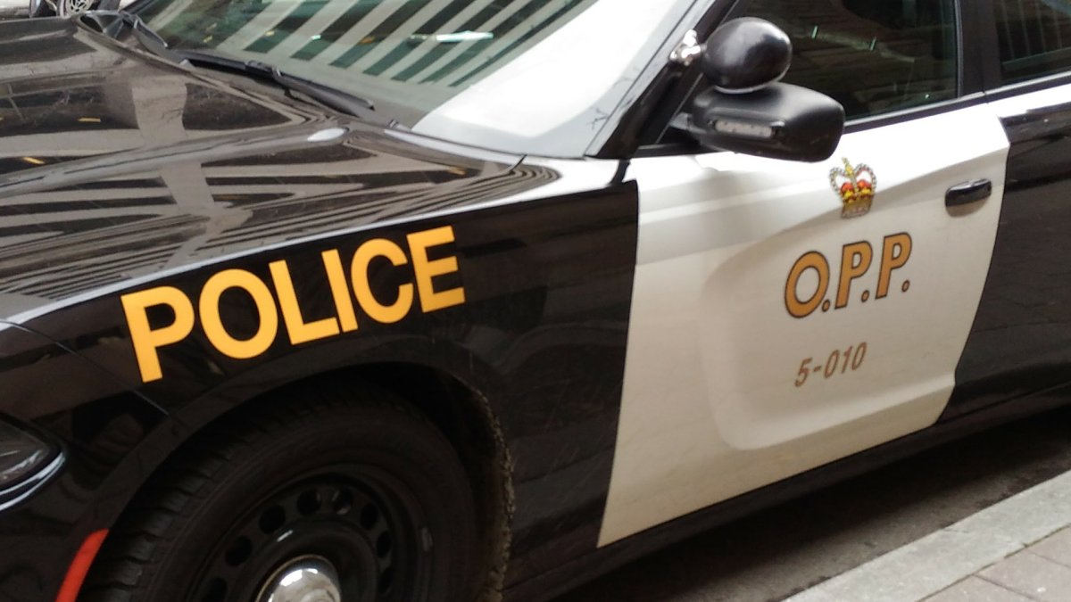 File photo of an OPP cruiser.