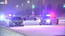 Continue reading: Man dead after being struck by vehicle in Brampton: police