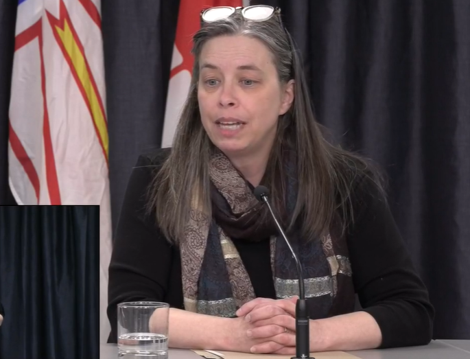 Dr. Janice Fitzgerald, Newfoundland and Labrador's chief medical officer of health, addresses media on COVID-19 on March 21, 2020.