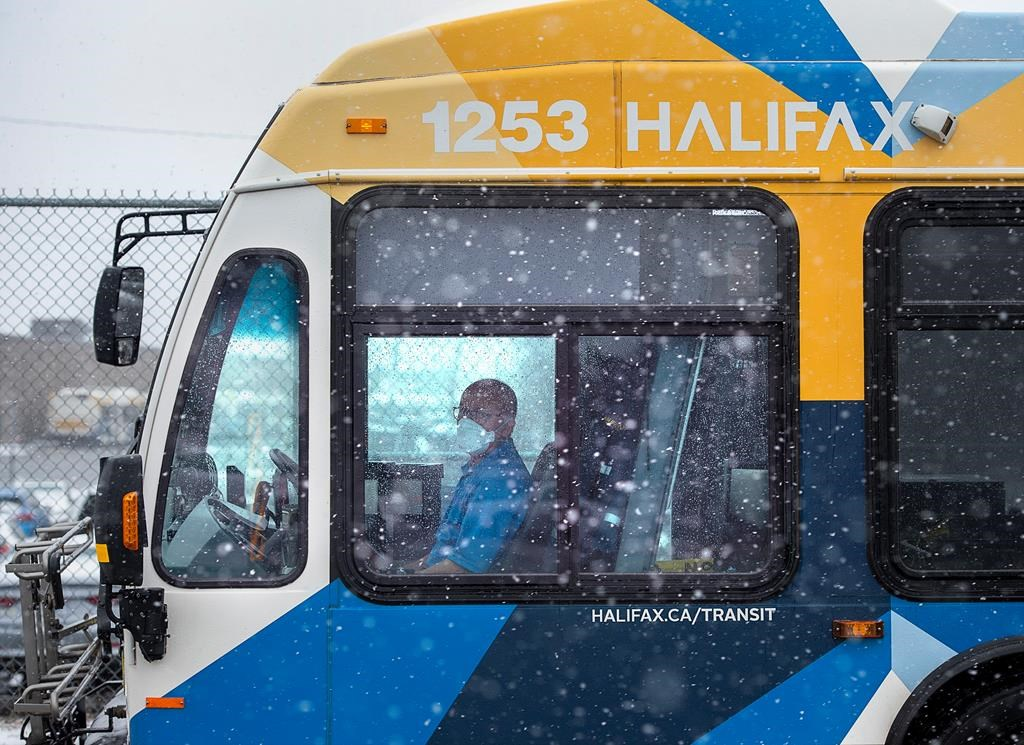 A driver waits at a stop outside the Halifax Transit Burnside maintenance depot Dartmouth, N.S., on Thursday, March 26, 2020.