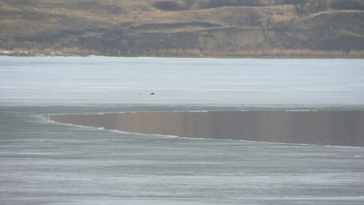 The Water Security Agency is working to raise Last Mountain Lake's water levels going into the summer months.