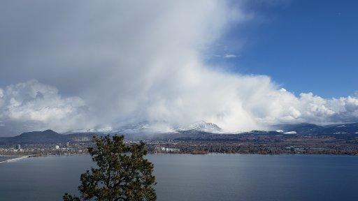 Mixed weather – Elaine Grison