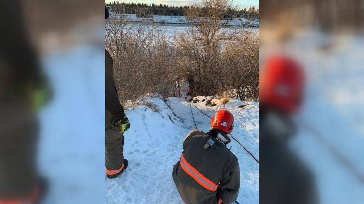 Saskatoon firefighters rescue a man from the riverbank at the Sutherland dog park on March 2, 2020.