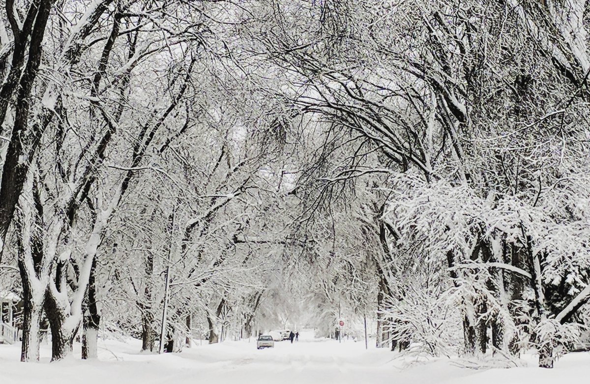 Southern Manitoba, including Winnipeg, was put under a snowfall warning Wednesday afternoon.