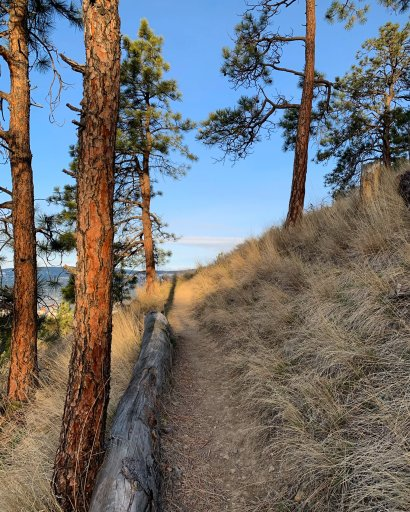 View from Dilworth – Sandi Illingworth