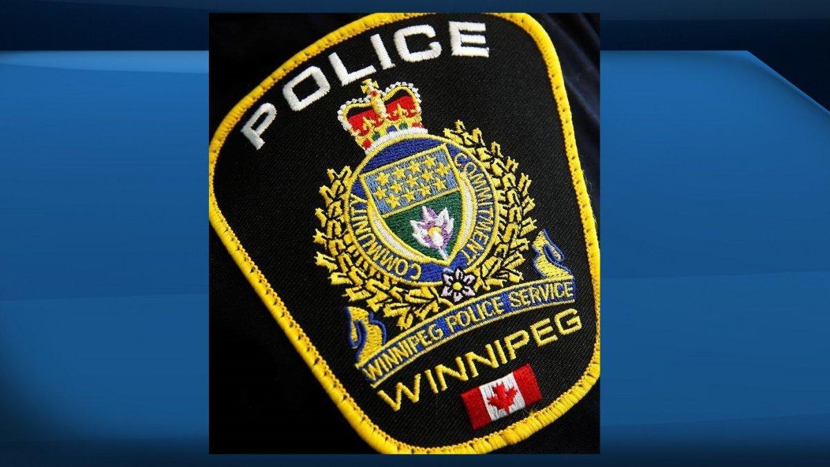 Update: Winnipeg police locate missing girl, 11 - image