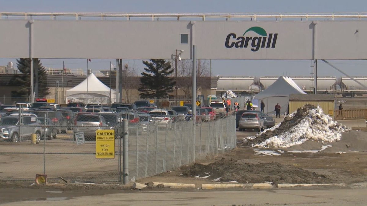 The president of a union representing employees at some of the largest meat-packing plants in the country says there needs to be a discussion about making the COVID-19 vaccine more readily available to essential workers.