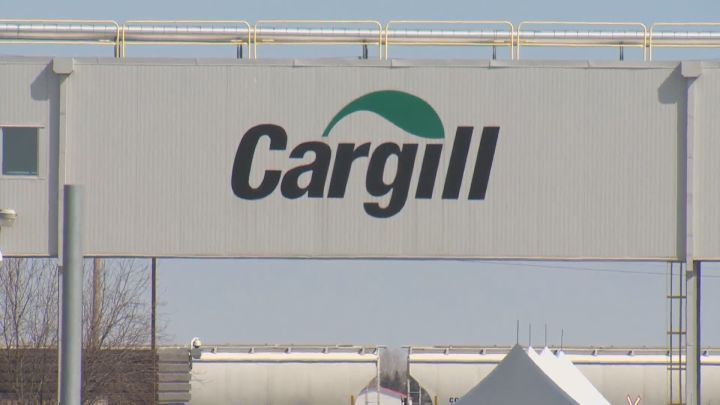Cargill announced plans to break ground on a new canola processing facility in Regina to support the growing global demand for canola products.