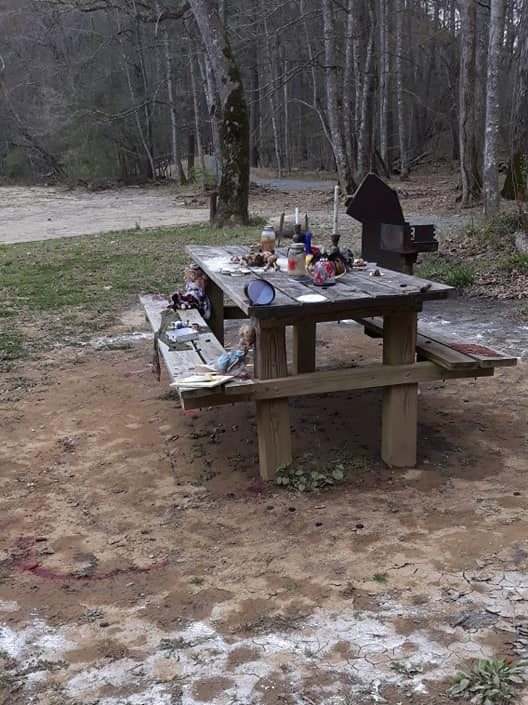 A picnic table full of stabbed dolls and dead birds are under investigation in Virginia after a local man made the discovery on April 17.
