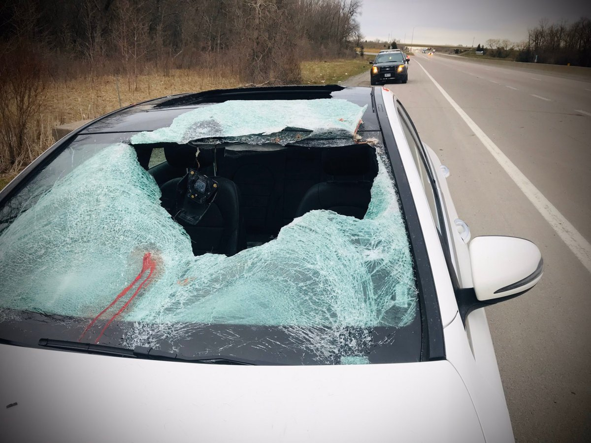OPP say two people were taken to hospital after their vehicle struck a deer on Hwy. 401 near Belleville on Friday morning.