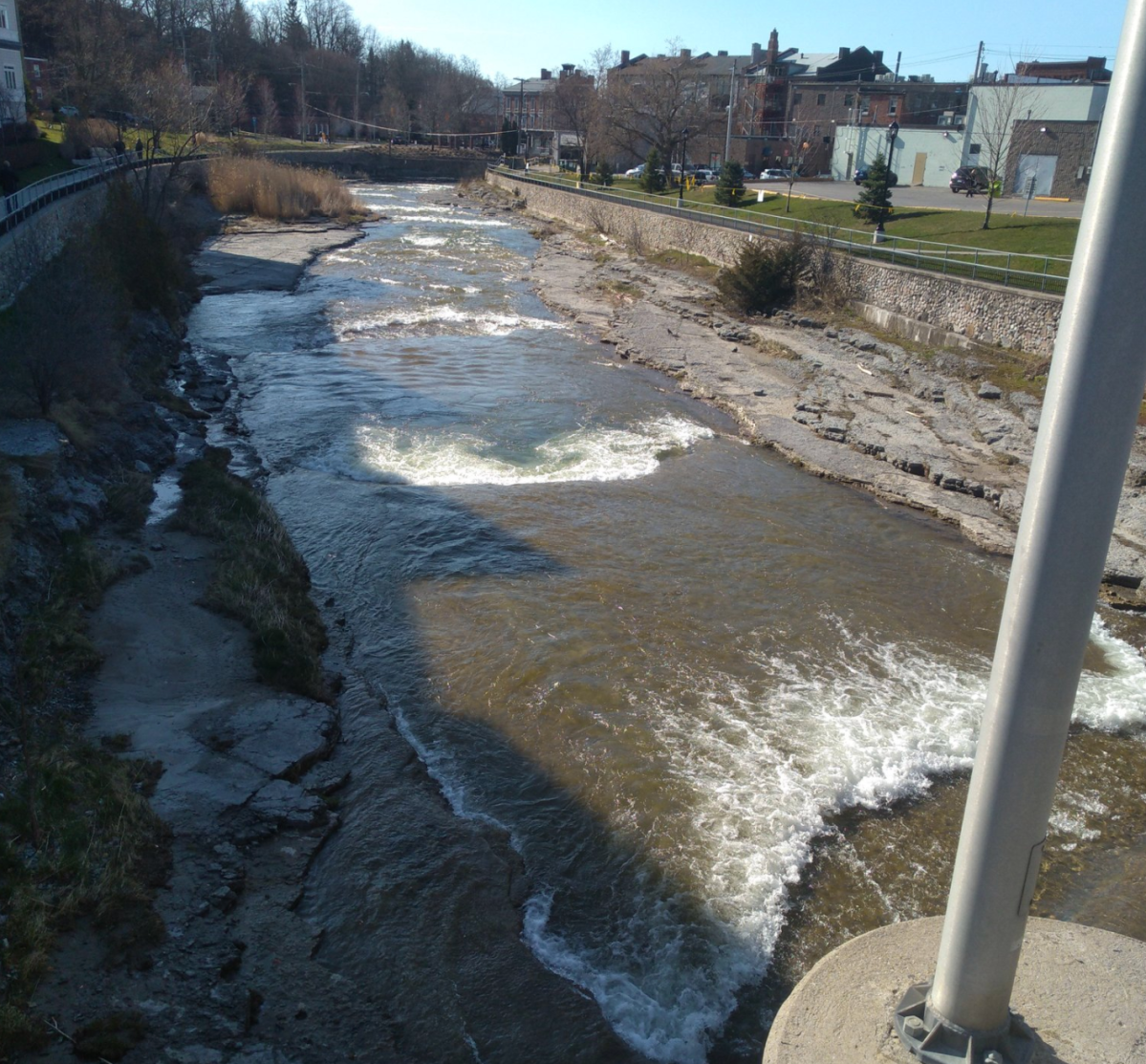Police in Port Hope issued several tickets for fishing on the Ganaraska River on the weekend.
