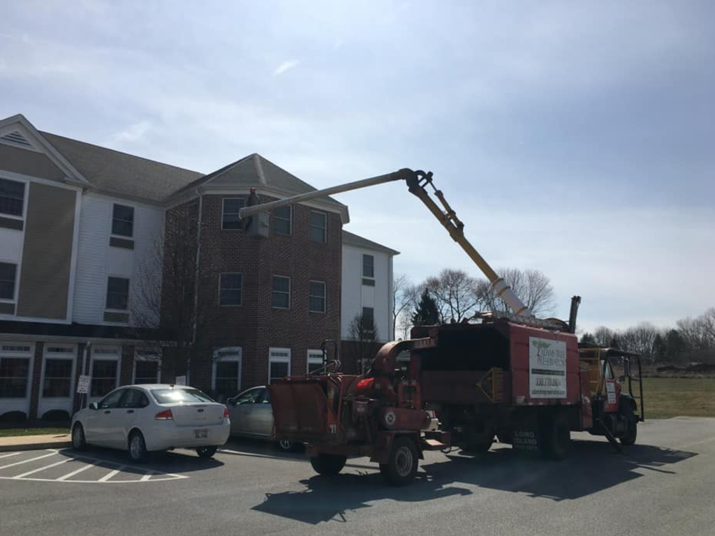 Ohio arborist Charley Adams used his bucket truck to visit his 81-year-old mom in her third-storey room at her assisted living home.