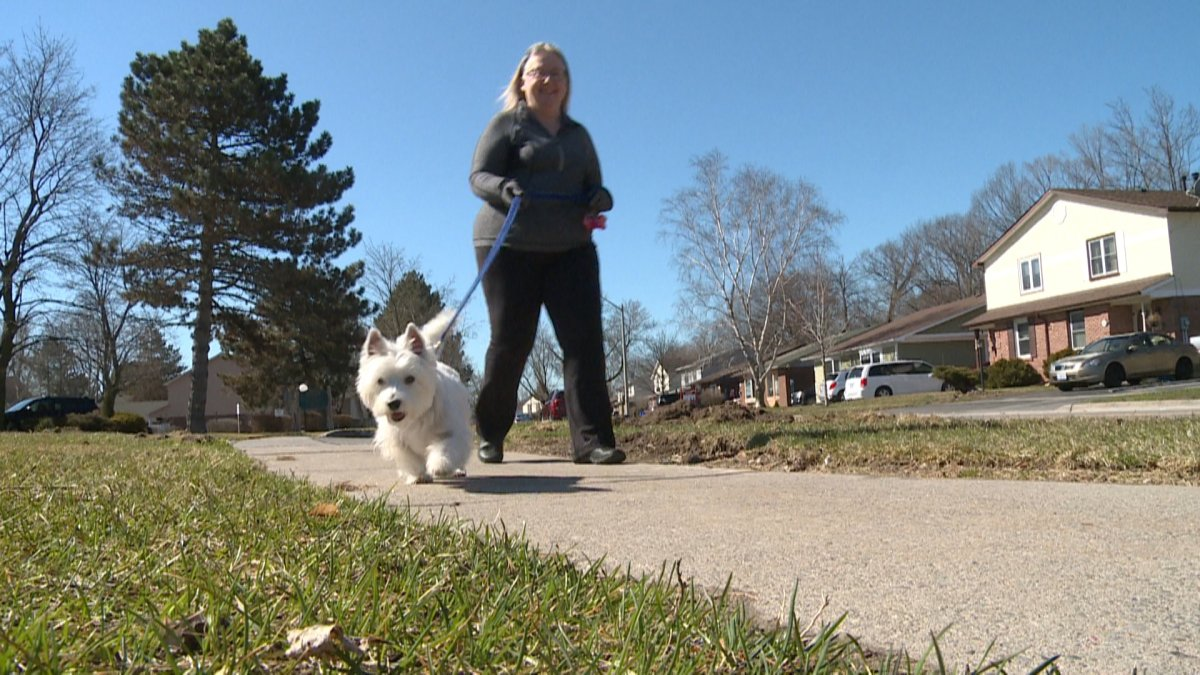 A group of dog owners are taking part in a virtual 30-day dog walking challenge.