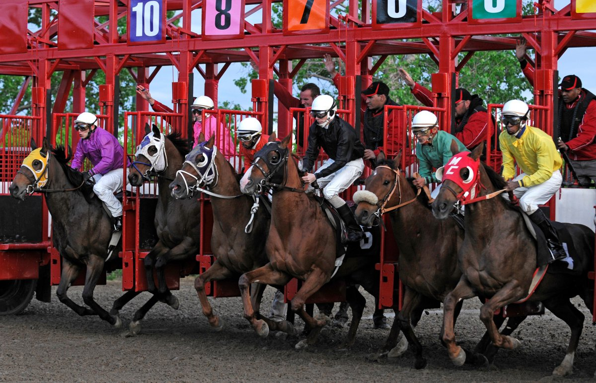 Supplied Photo from Assiniboia Downs .