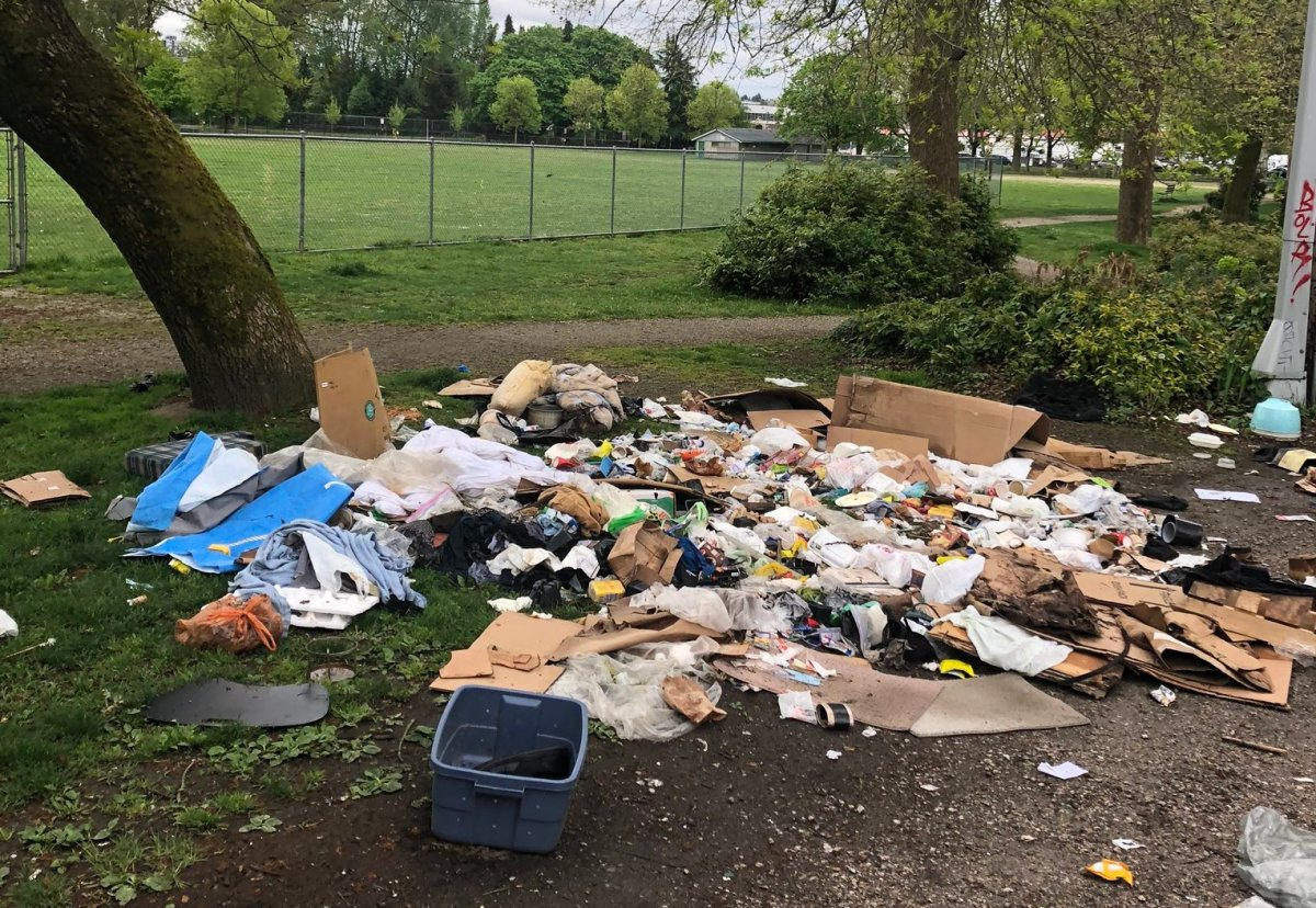 A load of trash dumped in Vancouver's Strathcona Park.