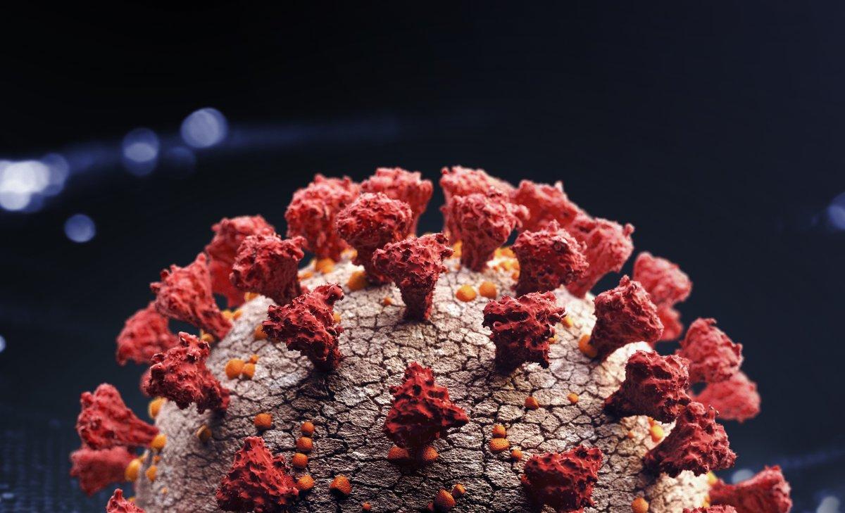 Coronavirus close-up.