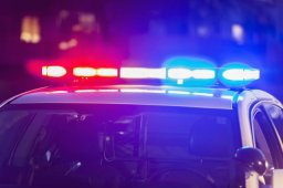 Continue reading: Teen, 17, dies following injuries sustained from three dogs in Middlesex County: OPP