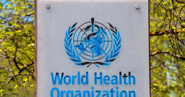 World Health Organization ill-equipped to probe origins of COVID-19, experts argue
