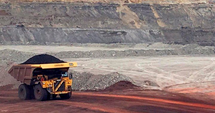 Ottawa to conduct environmental review of new steelmaking coal projects over selenium concerns
