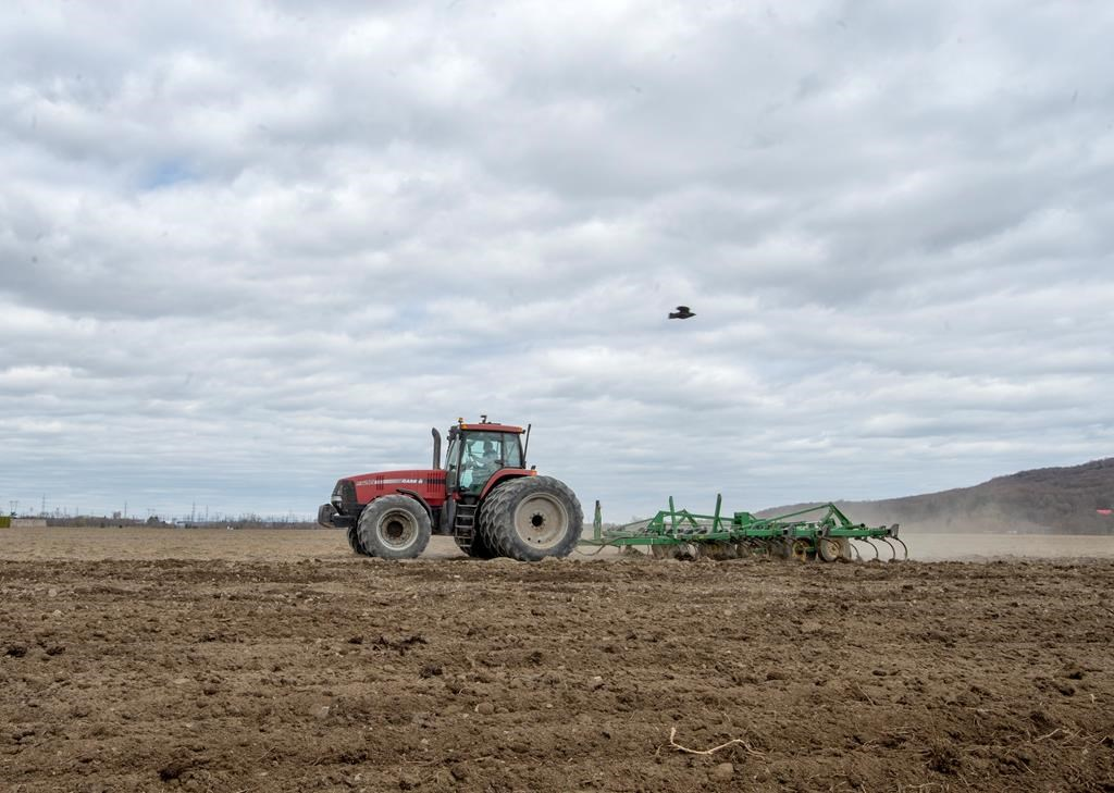 Most of southern Saskatchewan, and some eastern parts of the province, are in a severe drought heading into spring seeding.