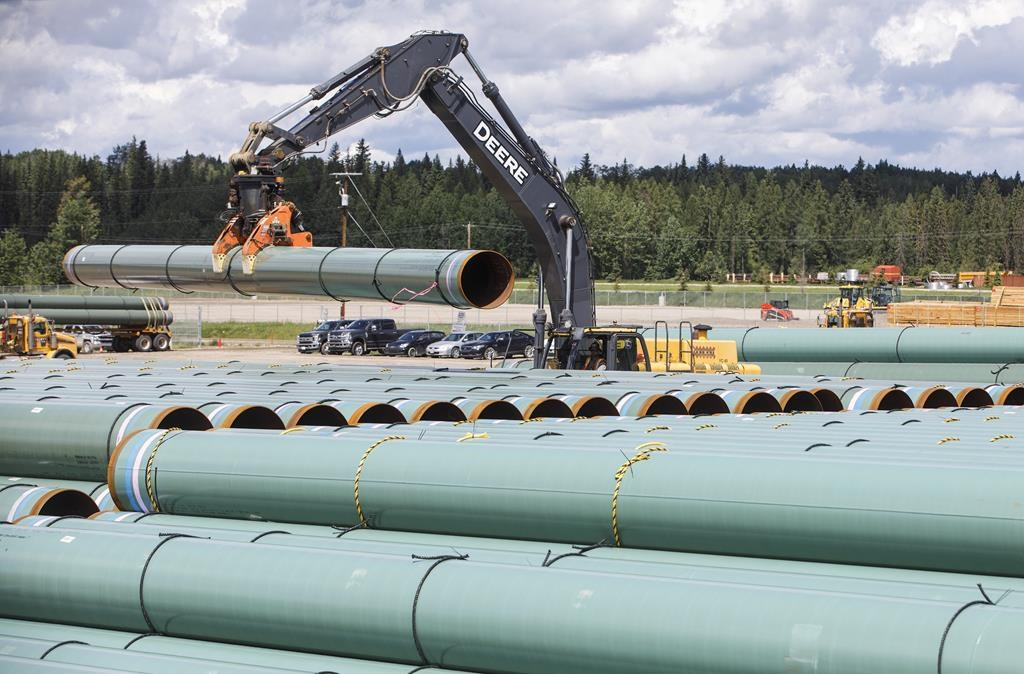 """Pipe for the Trans Mountain pipeline is unloaded in Edson, Alta. on Tuesday June 18, 2019. The Trans Mountain Expansion project says it has reached another """"key milestone"""" as it works to triple capacity of a pipeline moving oil from the Edmonton area to port in Burnaby, B.C. THE CANADIAN PRESS/Jason Franson."""