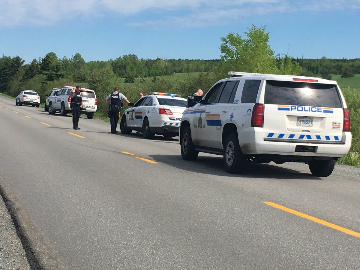 Nova Scotia RCMP are investigating after a fatal pit bull attack in Middle Musquodoboit, N.S.