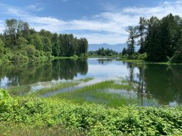 Continue reading: Evacuation alerts issued in Fraser Valley due to flooding