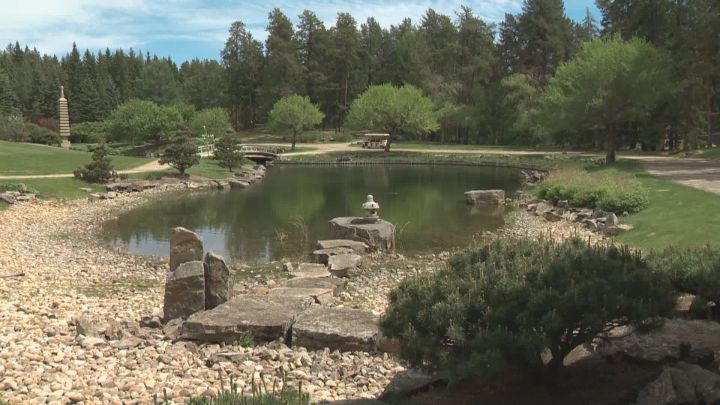 The University of Alberta Botanic Garden reopened near Devon on Monday and those who run it say they expect it to become a popular place to go during the ongoing COVID-19 pandemic.
