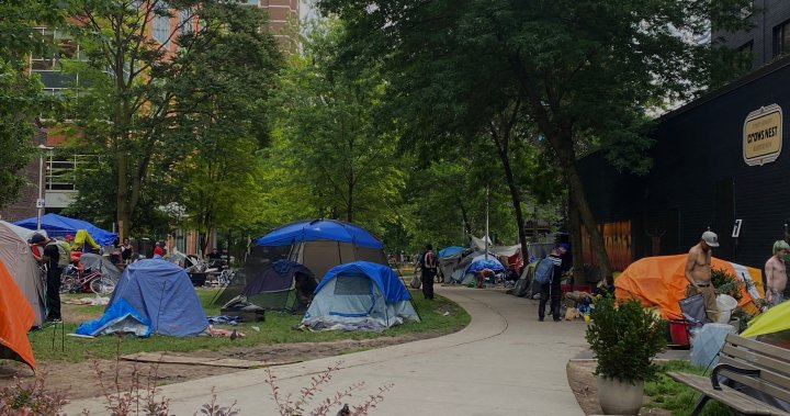 Lawsuit alleges 5 assaulted by officers at clearing of Toronto homeless encampment – Toronto