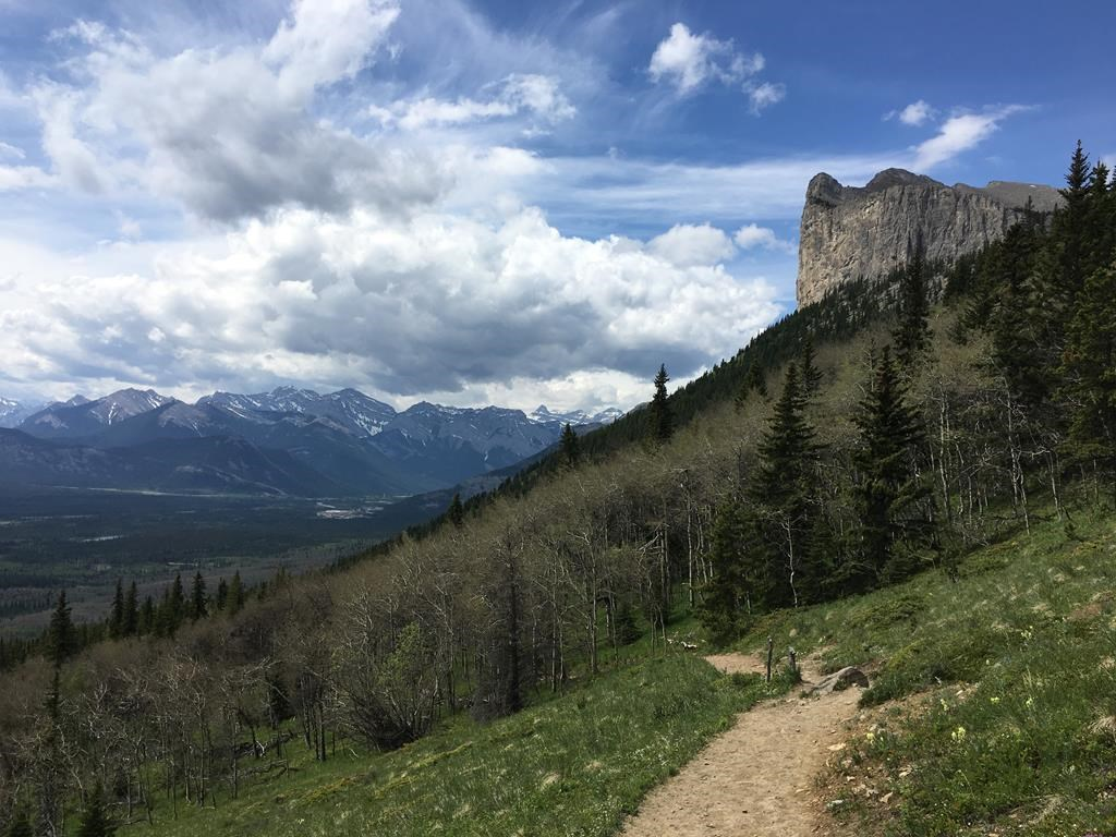 The hiking trail on Yamnuska in Alberta's Bow Valley Wildland Provincial Park, part of Kananaskis Country, is shown in June 2017. Some of Alberta's climbing group is making a push to change the names of some climbing routes and peaks in the province due to racist connections. THE CANADIAN PRESS/Colette Derworiz.
