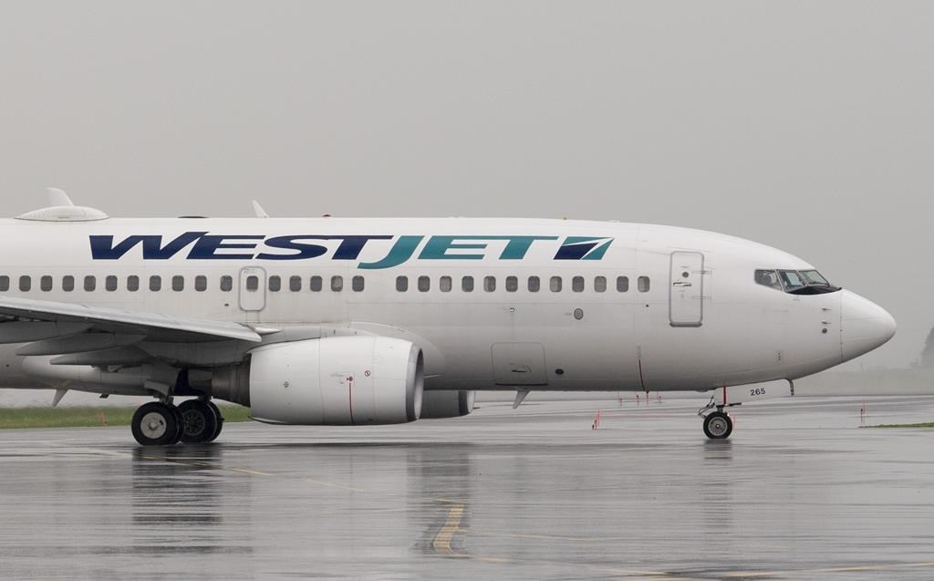 A WestJet airlines plane at the Ottawa airport Wednesday June 26, 2019.