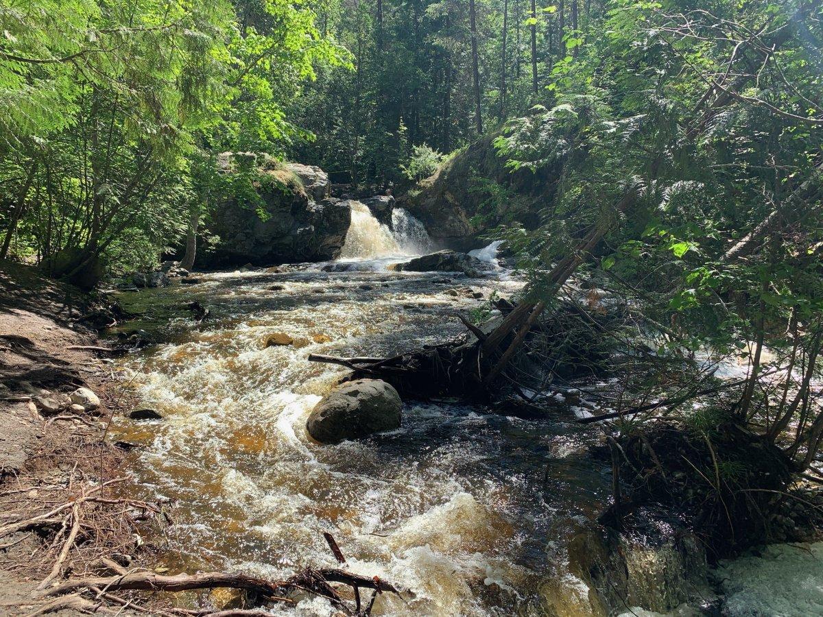 File photo: Mill Creek Regional Park near Kelowna.