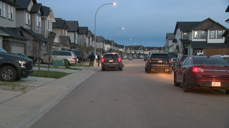 Calgary police investigate a shooting on Skyview Shores Manor Northeast just after 4 a.m. on Friday, June 26, 2020.