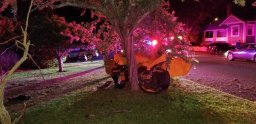 Continue reading: B.C. driver, who had pro-speeding decals on vehicle, crashes into tree